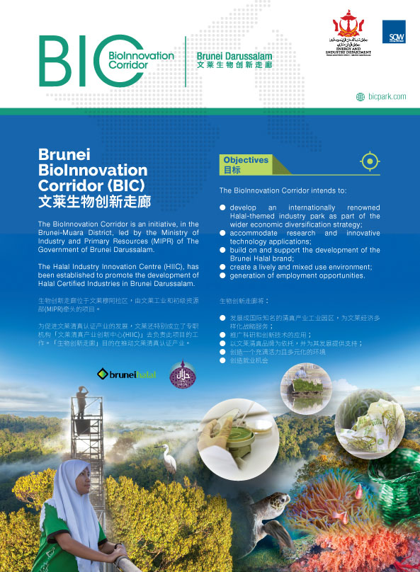 Factsheet_BIC_2015_web